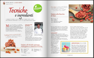 Tecniche e ingredienti – gelato vegan